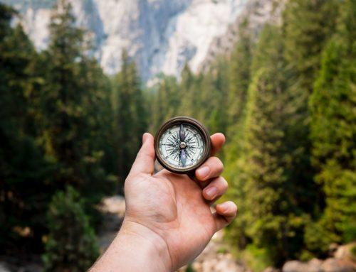 Ikuista oppimista innolla – vai jatkuvaa ponnistelua päivästä toiseen?